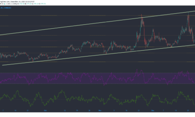 Bitcoin Cash, NEM, Decred Price Analysis : 12 월 24 일
