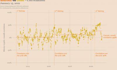 비트 코인이 ATH에 도달 한 이후 11 일, 매일 더 강해짐