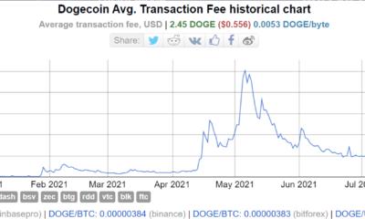 Dogecoin 공동 창립자는 1.14.4의 성공이 이것에 달려 있다고 믿습니다.